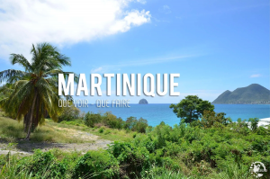 Proposition Martinique